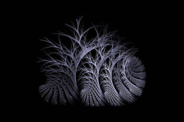 Digital Art - Bare Trees Moonlight by Doug Morgan