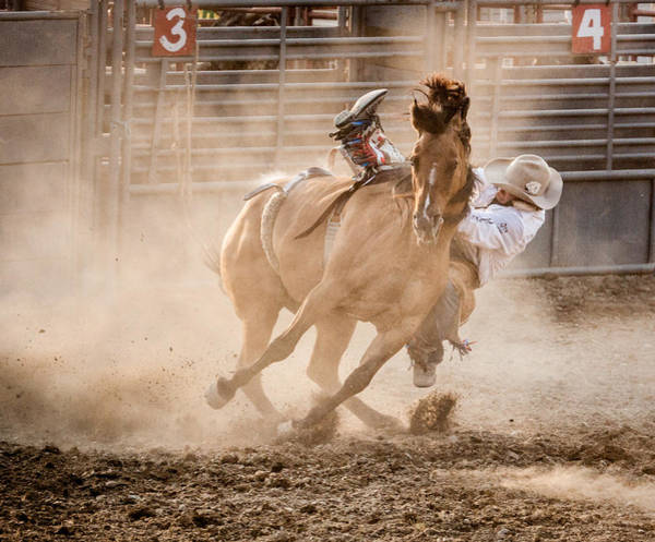 Rides Photograph - Bareback Bronc by Jay Heiser