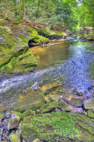 Photograph - Bark Camp Creek 25 by Sam Davis Johnson