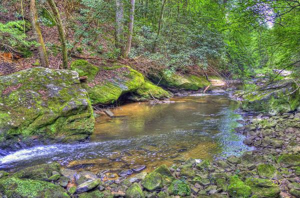 Photograph - Bark Camp Creek 27 by Sam Davis Johnson