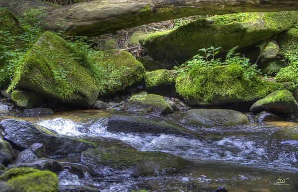 Photograph - Bark Camp Creek 3 by Sam Davis Johnson