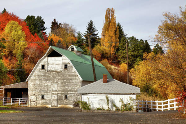 Photograph - Barn Along The South Fork by David Patterson