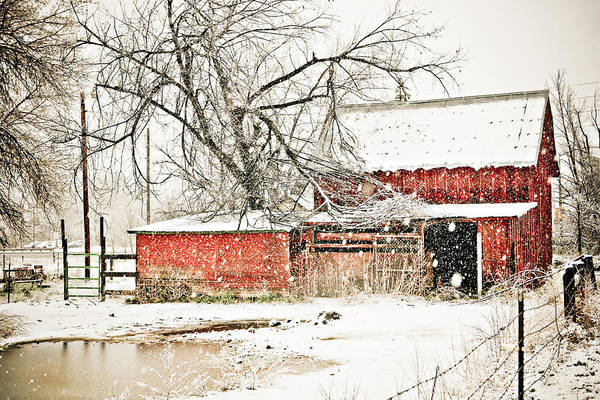 Photograph - Barn And Pond by Marilyn Hunt