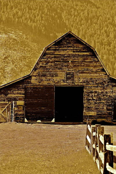 Photograph - Barn In Sepia by Diana Hatcher