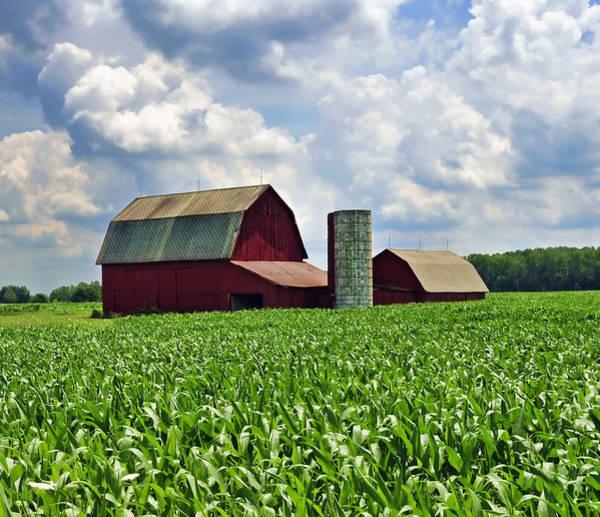 Wall Art - Photograph - Barn In The Corn by David Arment