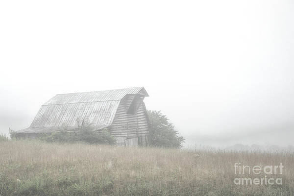 Photograph - Barn In The Fog by Tim Wemple