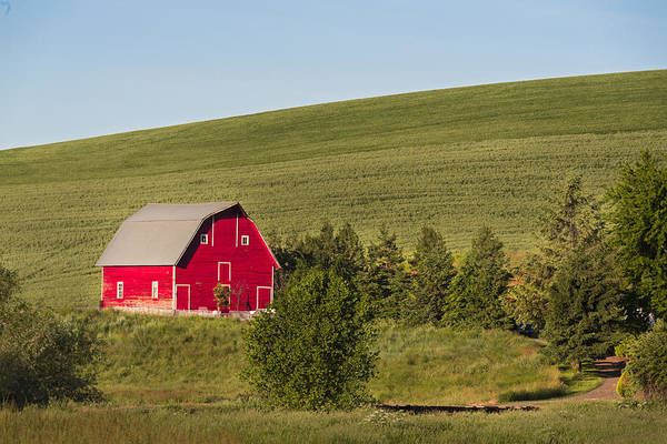 Photograph - Barn On The Hill by Jon Glaser