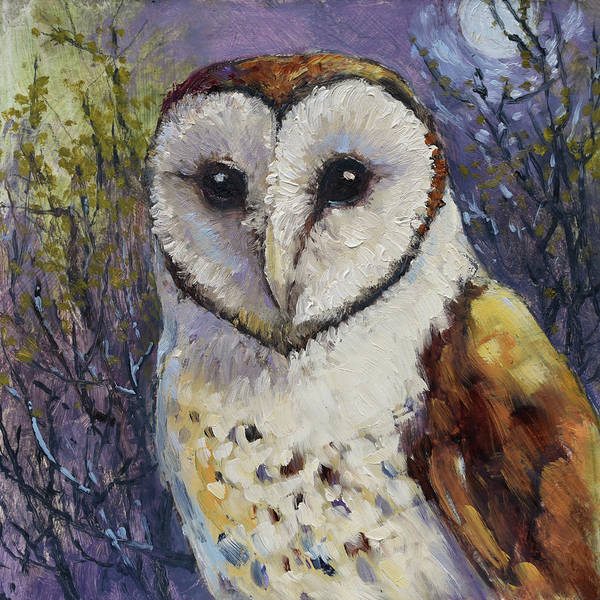 Barn Owl Painting - Barn Owl 1 by Tracie Thompson