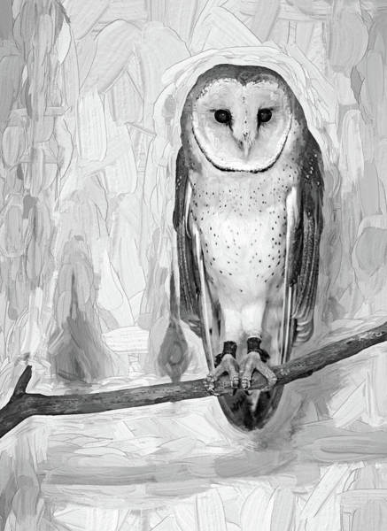 Impasto Photograph - Barn Owl - Impasto Bw by Steve Harrington