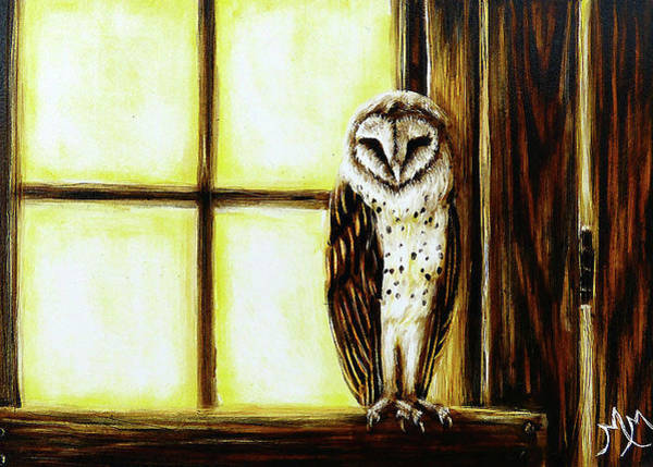 Painting - Barn Owl by Monique Morin Matson