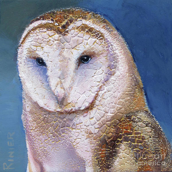 Barn Owl Painting - Barn Owl Portrait by Bonnie Rinier