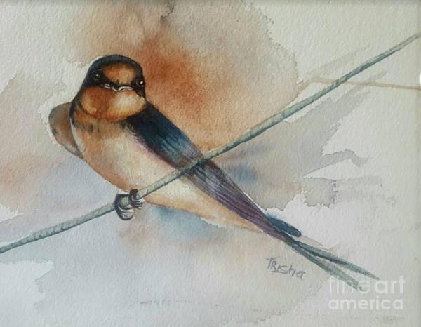 Barn Swallow Wall Art - Painting - Barn Swallow by Patricia Pushaw