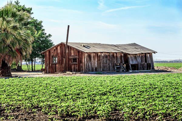 Photograph - Barn With Vintage Chrysler Car by Gene Parks