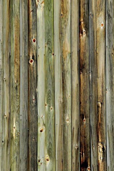 Photograph - Barn Wood by Andrea Kollo