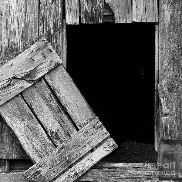 Photograph - Barn Wood by Patrick M Lynch
