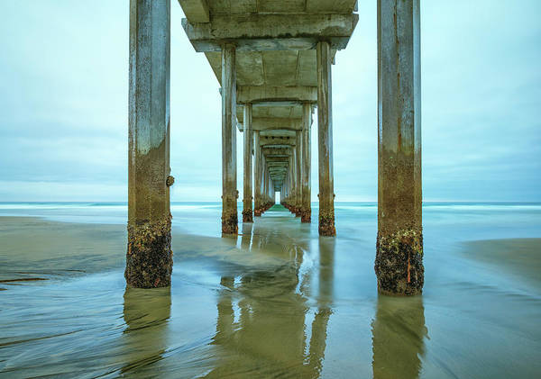 Scripps Pier Photograph - Barnacles by Joseph S Giacalone