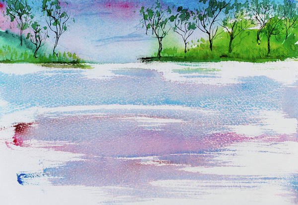 Gum Trees Frame The Sunset At Barnes Bay Art Print