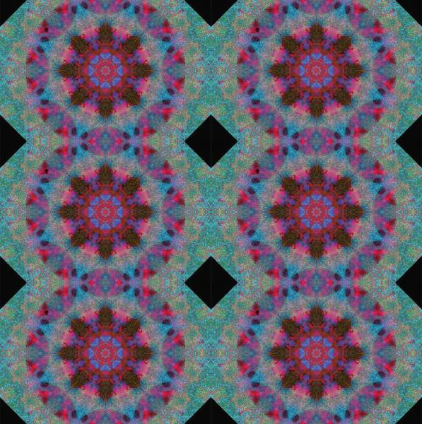 Photograph - Barnie Paw Print Kaleidescope 2 Pattern by Dorothy Berry-Lound