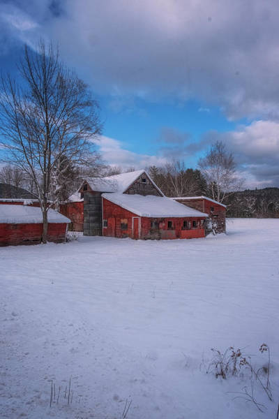 Photograph - Barns In Winter by Tom Singleton