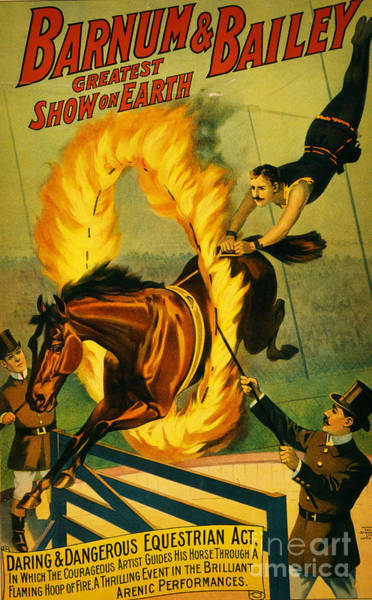 Daring Painting - Barnum And Bailey by Celestial Images