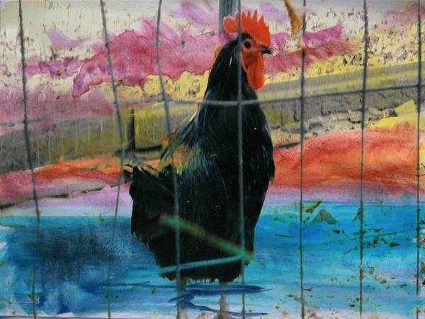 Digital Art - Barnyard Hero #3 by Robert Grubbs