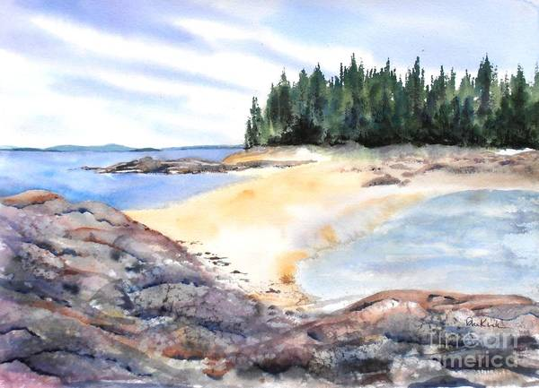 Painting - Barred Island Sandbar by Diane Kirk