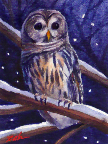 Barred Owl And Starry Sky Art Print