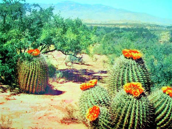 Cactus Mixed Media - Barrel Cactus In Bloom by Dominic Piperata