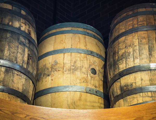 Photograph - Barrels Of Fun by Robin Zygelman