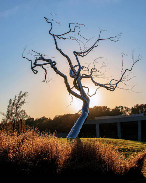 Northwest Photograph - Barren Light - Crystal Bridges Museum Of American Art by Gregory Ballos