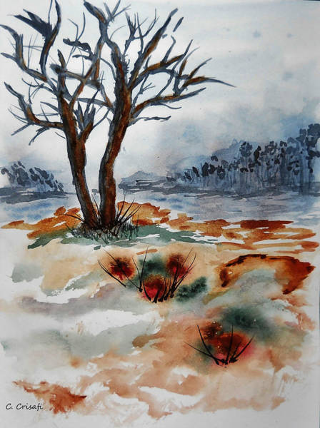 Painting - Barren Trees by Carol Crisafi