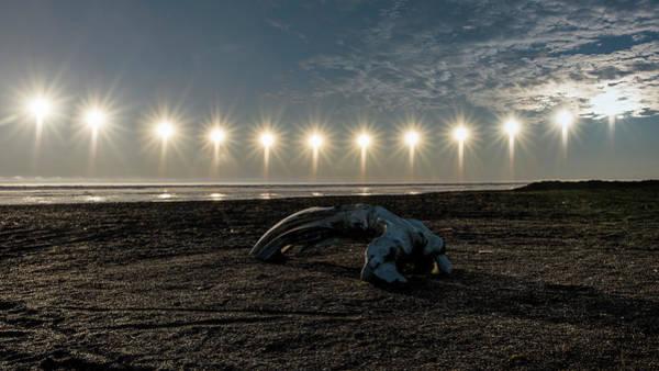 Photograph - Barrow Midnight Sun by Ian Johnson