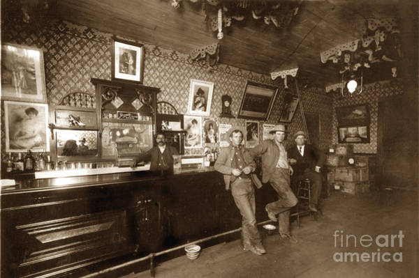 Photograph - Bartender Behind Bar Interior Feb.1910 by California Views Archives Mr Pat Hathaway Archives