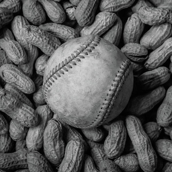 Photograph - Baseball And Peanuts Black And White Square  by Terry DeLuco