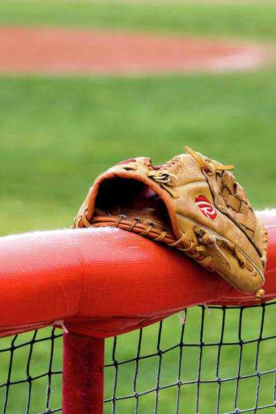 Photograph - Baseball Glove On Infield Fence by SR Green