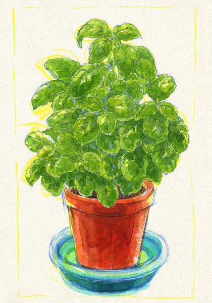 Painting - Basil by Judith Kunzle
