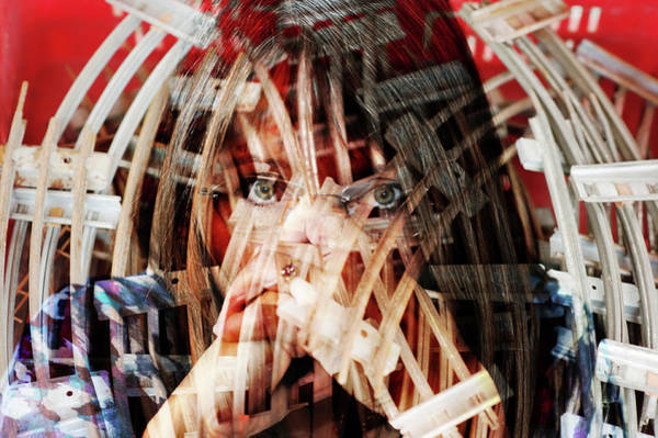 Photograph - Basket Case by Jean Gill