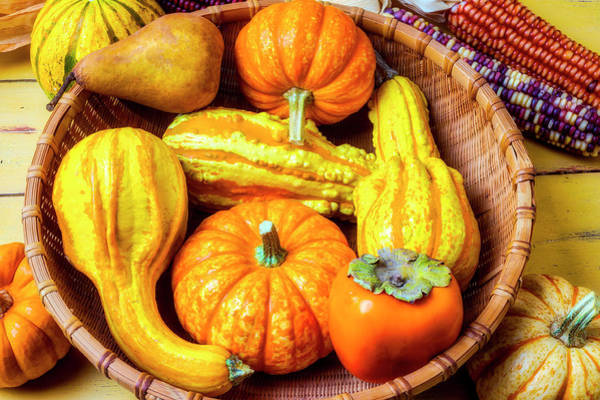 Indian Corn Photograph - Basket Of Autumn Gourds And Fruits by Garry Gay