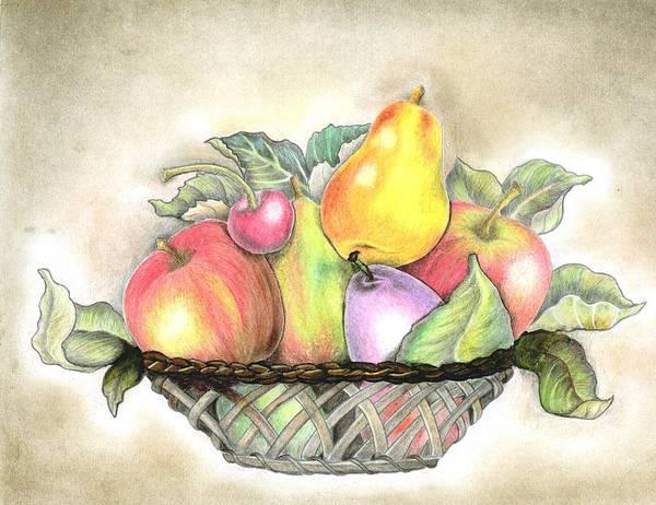 Wall Art - Drawing - Basket Of Fruits by Tara Krishna