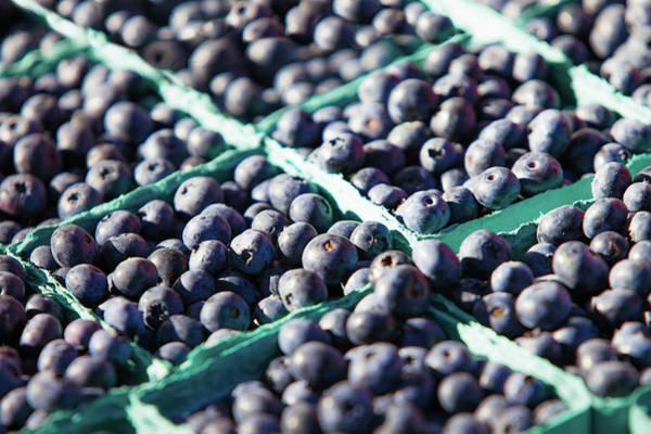 Photograph - Baskets Of Blueberries by Todd Klassy