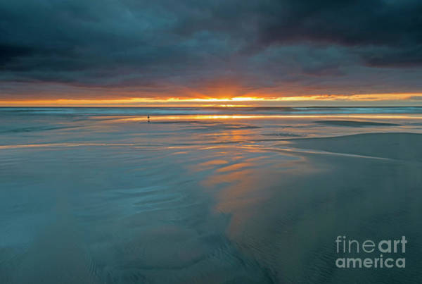 Wall Art - Photograph - Basking In The Light by Mike Dawson