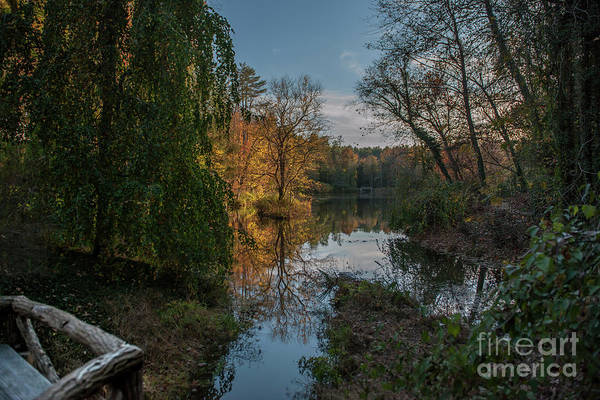 Photograph - Bass Pond In Asheville Nc by Dale Powell
