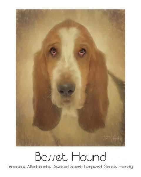 Digital Art - Basset Hound Poster by Tim Wemple