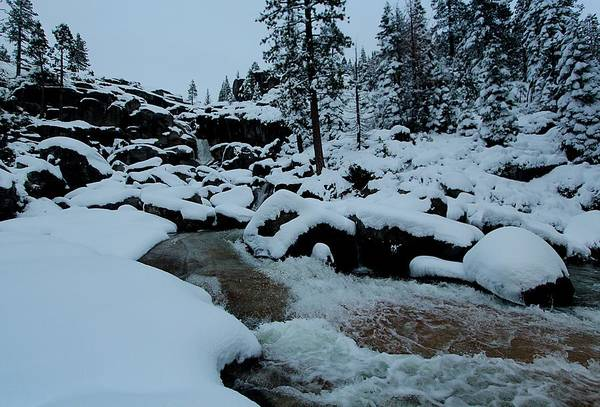 Photograph - Bassi Falls...winter Flow by Sean Sarsfield