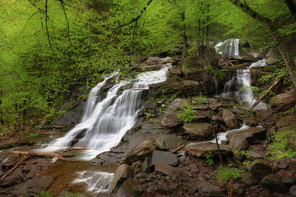 Photograph - Bastion Falls Summer by Bill Wakeley