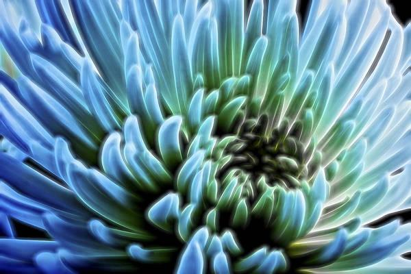 Digital Art - Bathing In Blue II by Jon Glaser