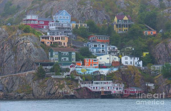 Photograph - Battery Homes In St. John's, Newfoundland by Les Palenik