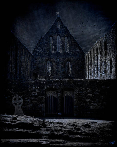 Photograph - Battle Abbey Ruins by Chris Lord