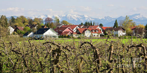 Photograph - Bavaria At Springtime by Tatiana Travelways