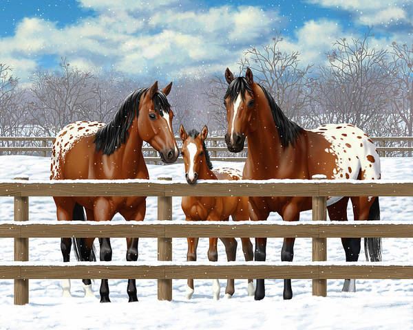 Wall Art - Painting - Bay Appaloosa Horses In Snow by Crista Forest